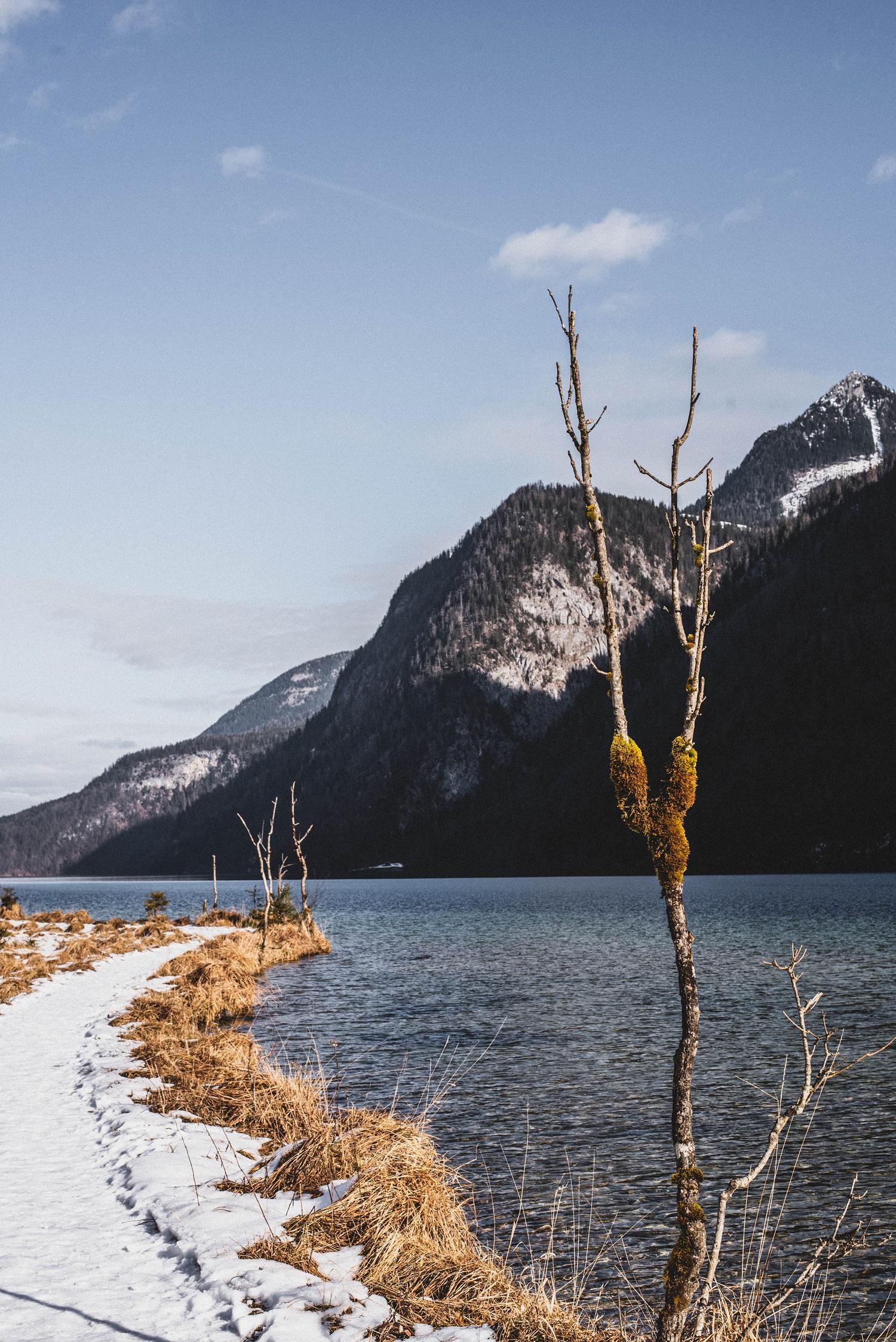 Stiller Königssee im Winter