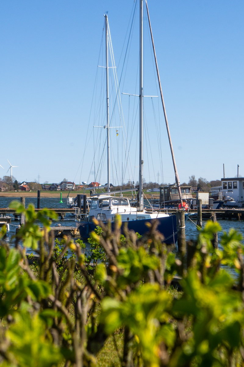 Arnis an der Schlei - Schiff im Hafen