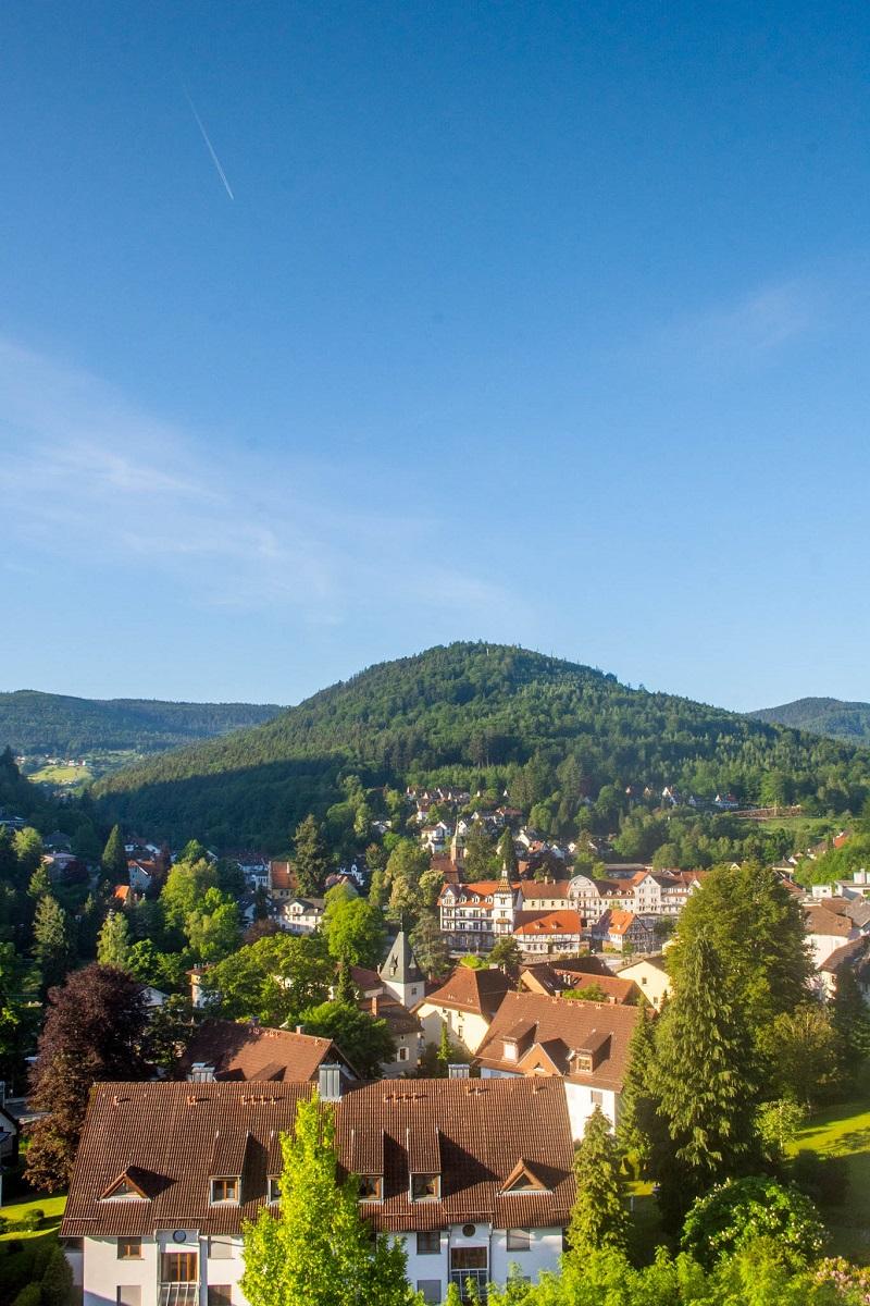 Bad Herrenalb Wandern - Michelsrank Hütte
