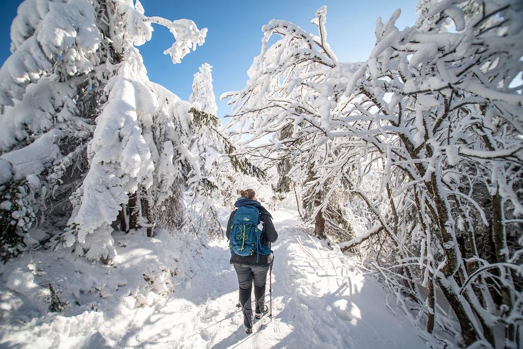 Winter im Bayerischen Wald - Großer Arber