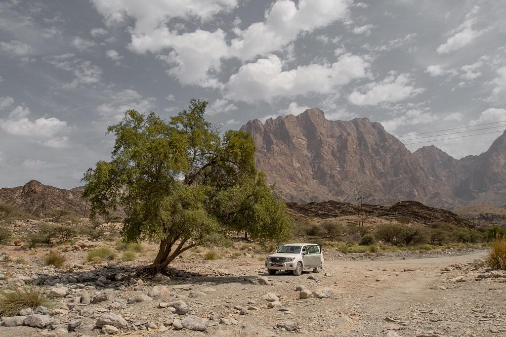 Auto vor Gebirge