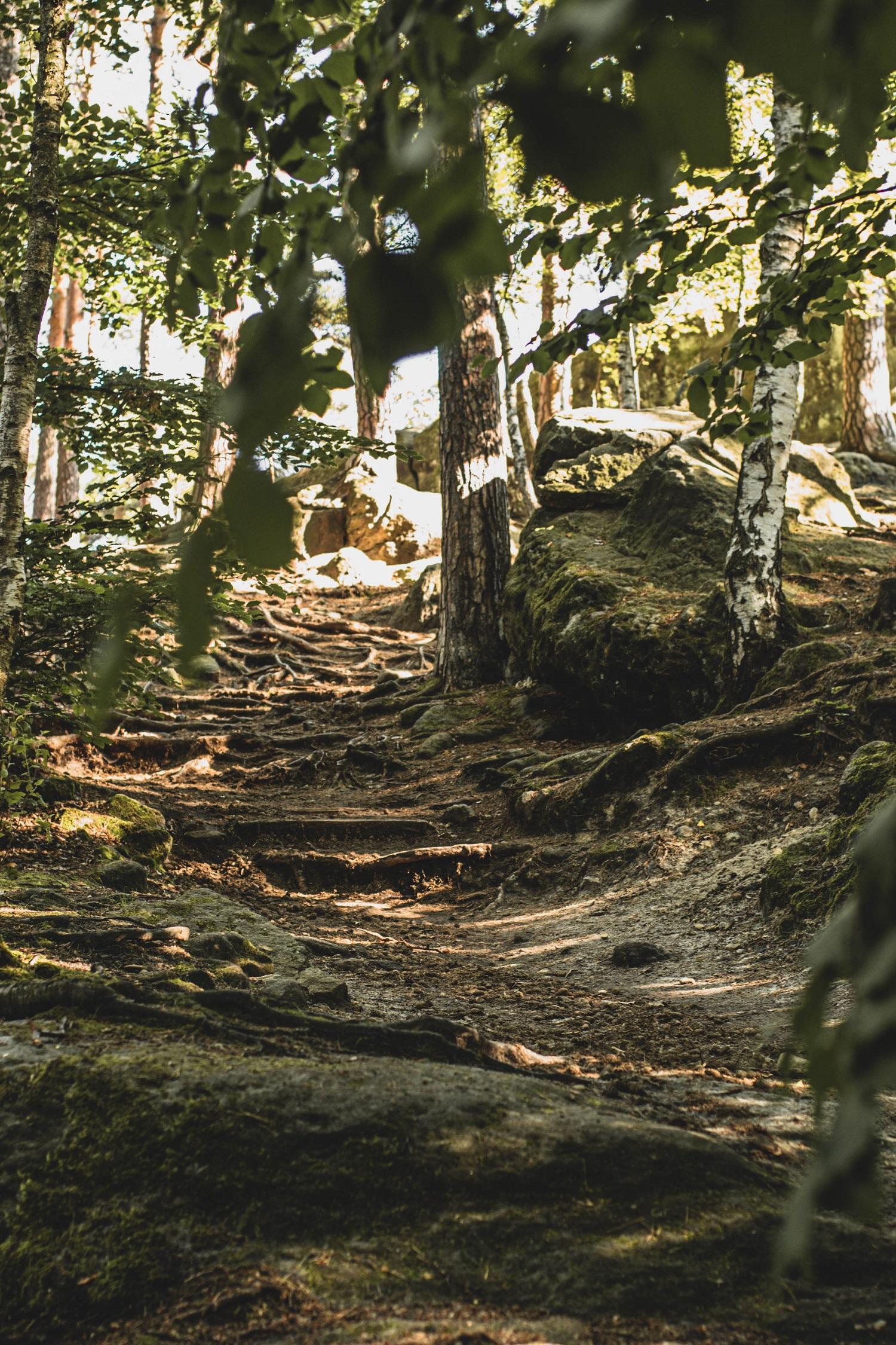 Stufen hinauf zum Felsenlabyrinth