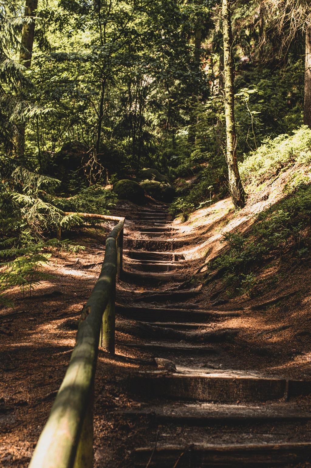 Wanderweg Gohrisch