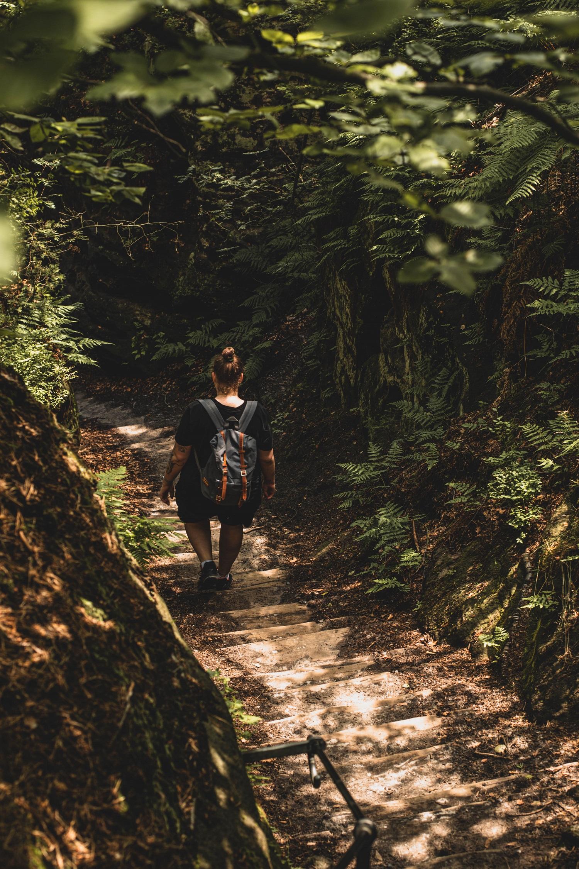 Wandern im Gohrisch