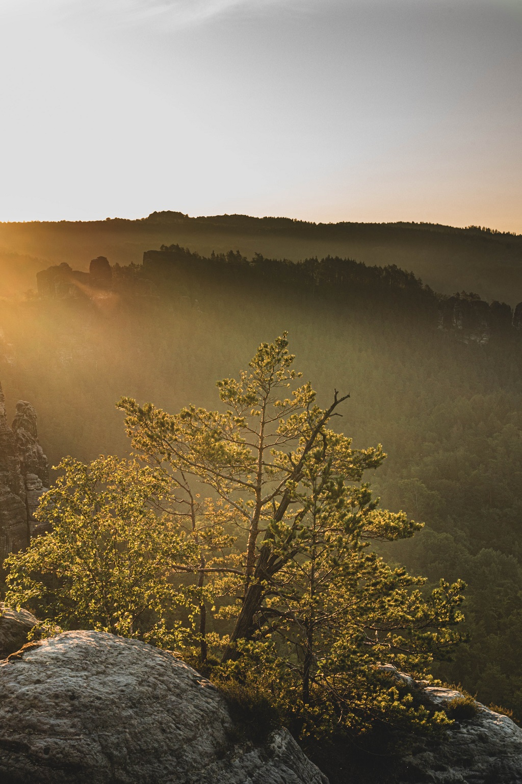 Sonnenaufang Bastei