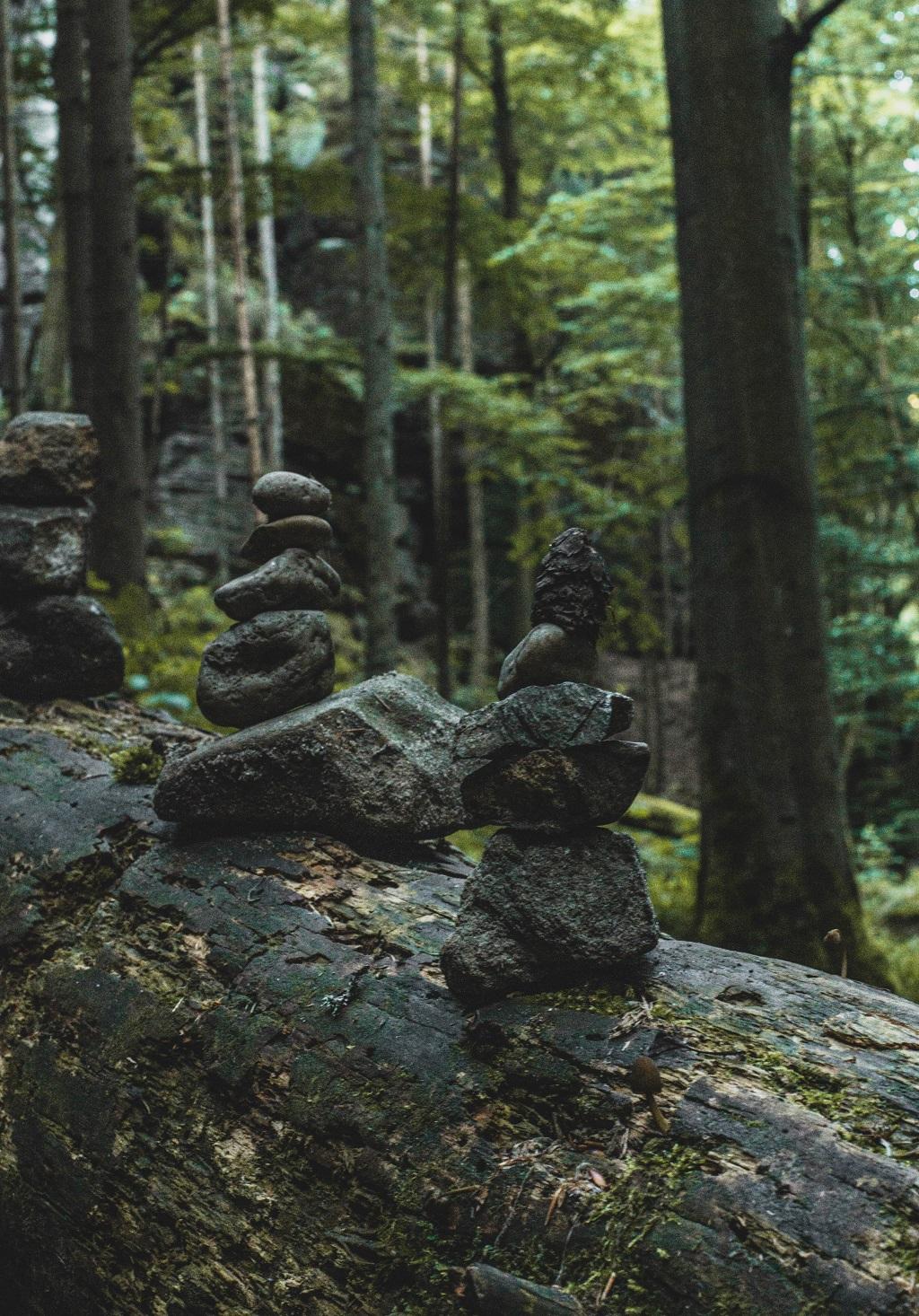 Uttewalder Grund Felsen
