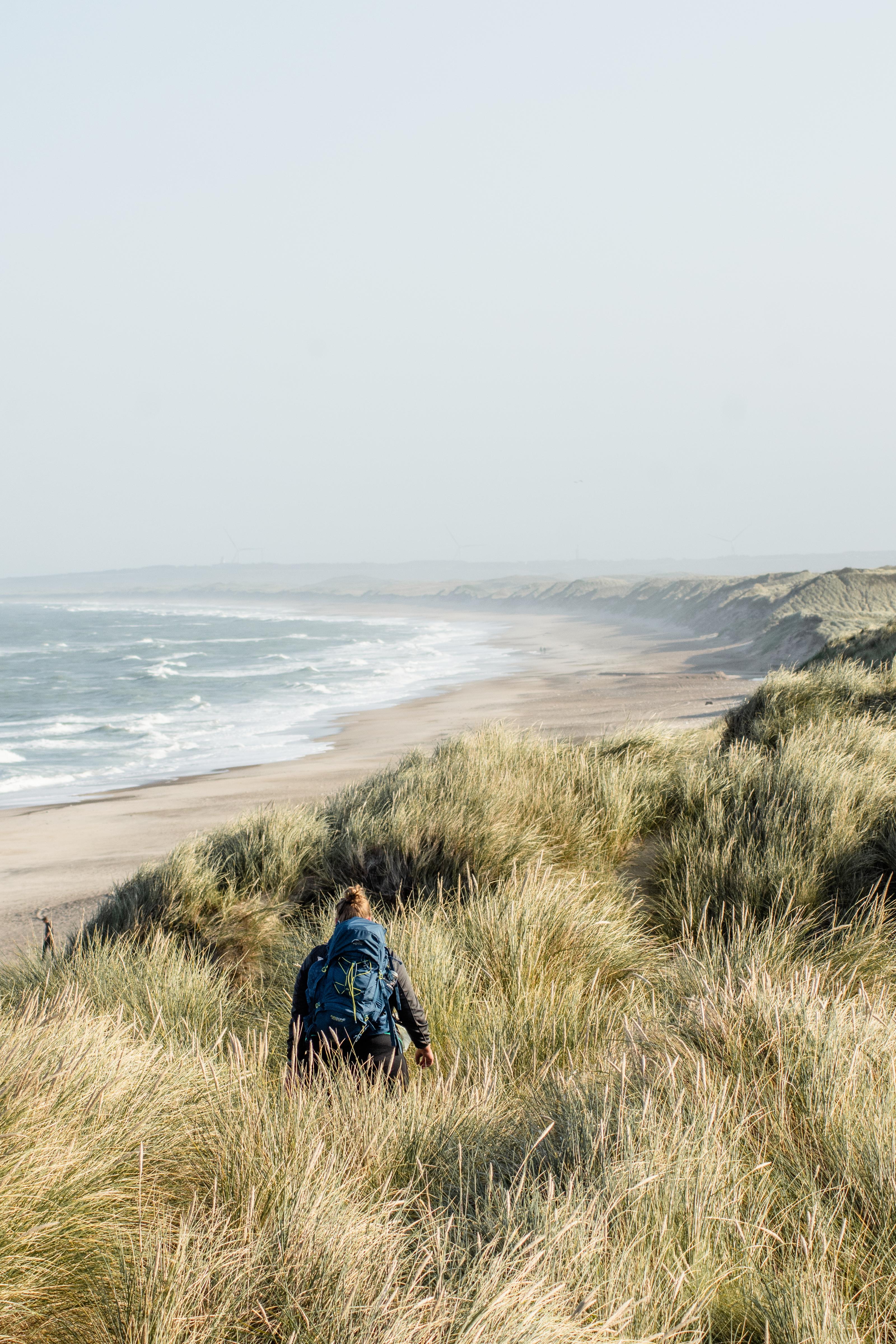 Blick auf die Dünen in Dänemark