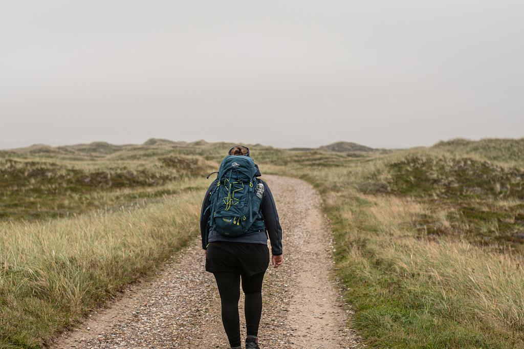 Wandern durchs Moor