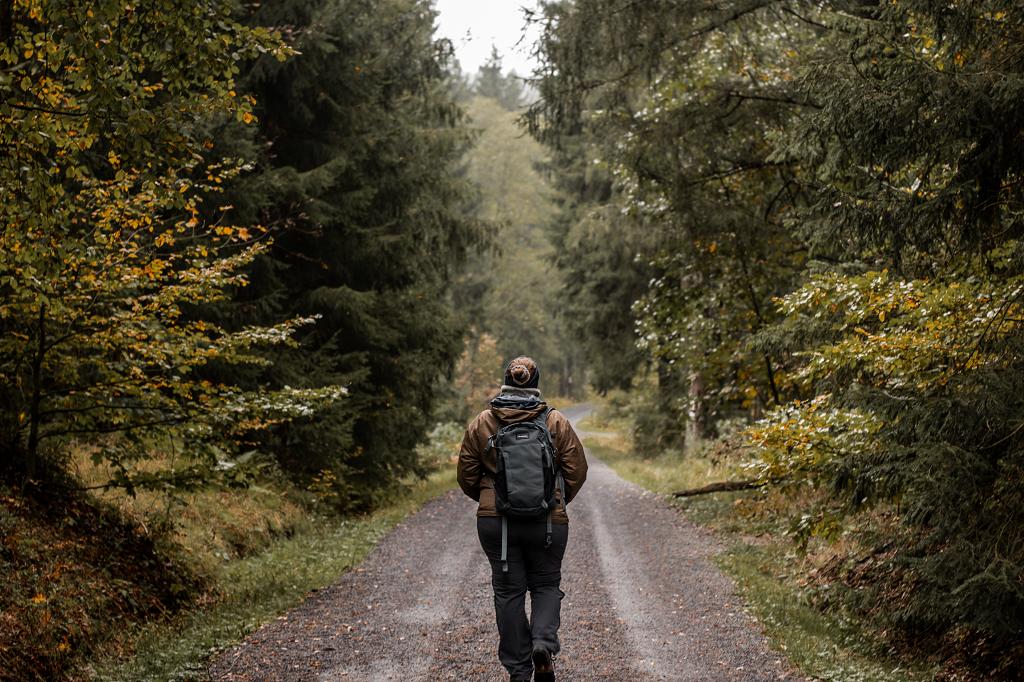 Wandern im Steinwald im Herbst