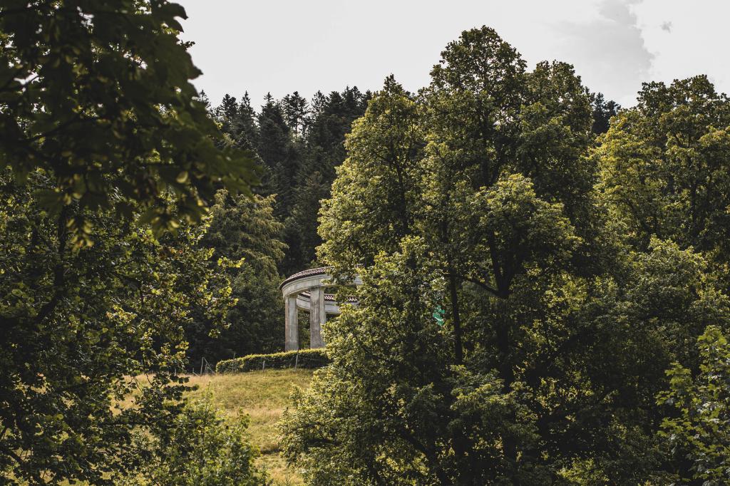 Wanderungen und Naturhighlights im Schwarzwald