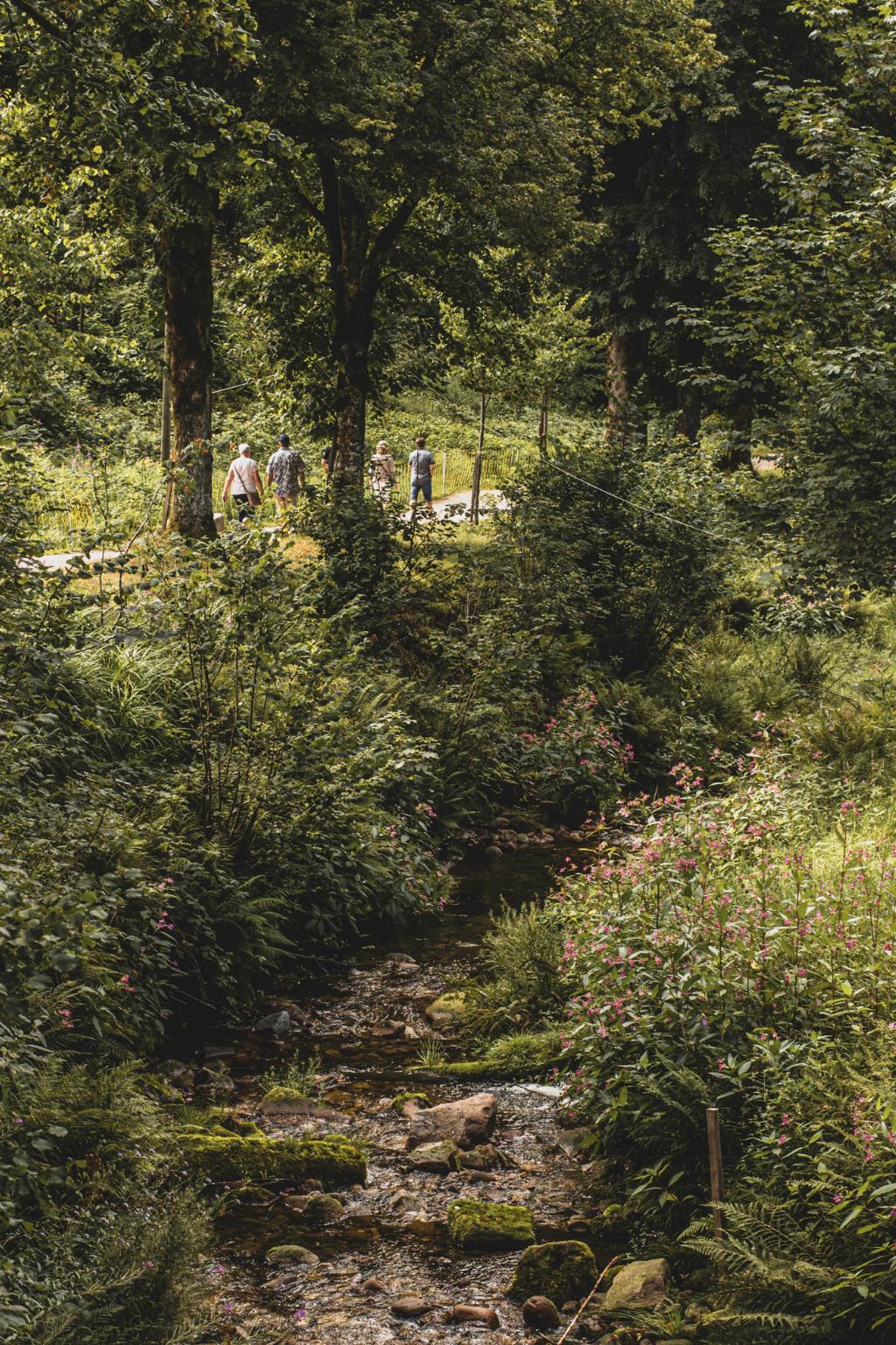 Allerheiligen Wasserfälle Wanderweg